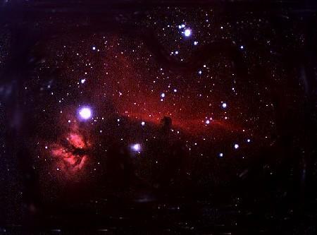 MICRO COSMOS 微小 宇宙